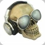 Crane tête de mort techno