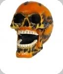 Crâne tête de mort FLAMMES
