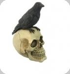 Crâne tête de mort CORBEAU
