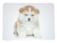 Tapis de souris  « 1 BéBé Akita Inu»