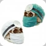 Crâne tête de mort Docteur