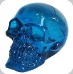 Crâne tête de mort en verre  Translucide Bleu