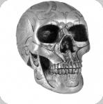 Crâne tête de mort CELTIQUE