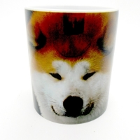 Mug  « Akita Inu fauve