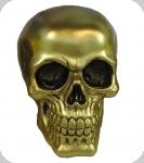 Crâne tête de mort couleur OR