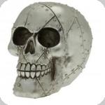 Crâne tête de mort plaque metal