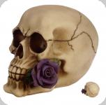 Crâne tête de mort avec  Rose Violette